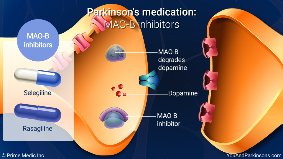Parkinson's medication: MAO-B inhibitors
