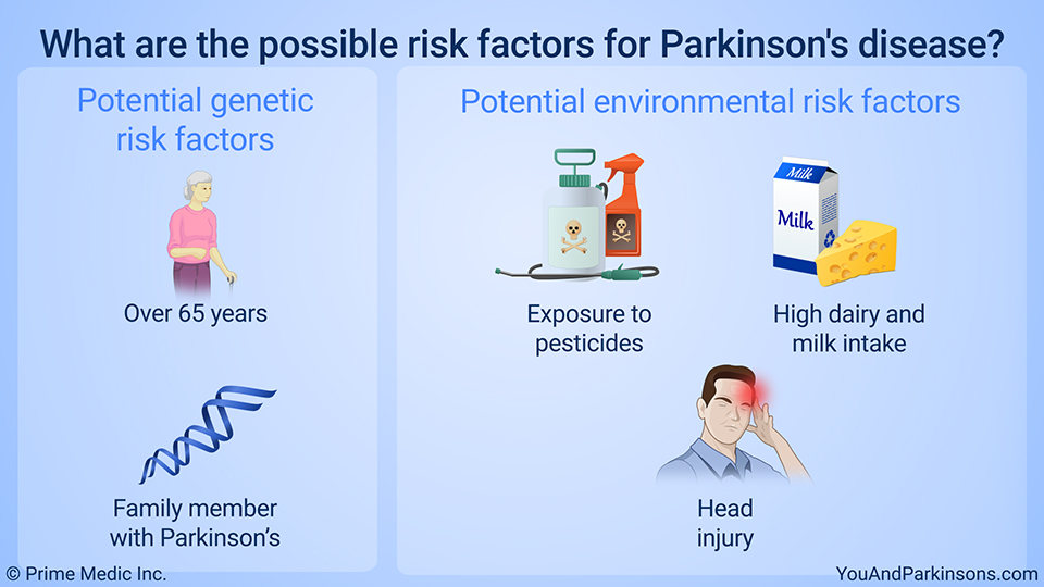 What are the possible risk factors for Parkinson's disease?