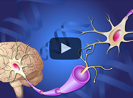 Learn about a variety of topics on Parkinson's disease through short animations.
